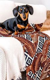 Як пошити диванну лежанку для котів і собак