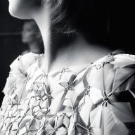 Дивовижні полотна з пір'я Джанейни Мільхейро