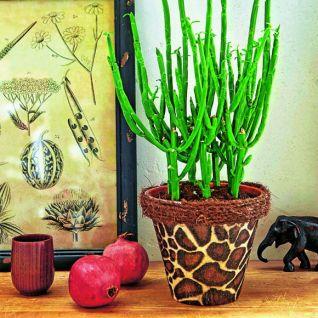 Як зробити декупаж квіткового горщика