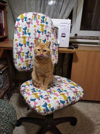 Новий чохол для стільця за 1 годину