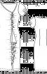 Сукня по фігурі з воланами - фото 3