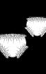Трусики з кулісками і оборками - фото 3