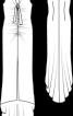Сукня весільна вузького крою і з довгим шлейфом - фото 3